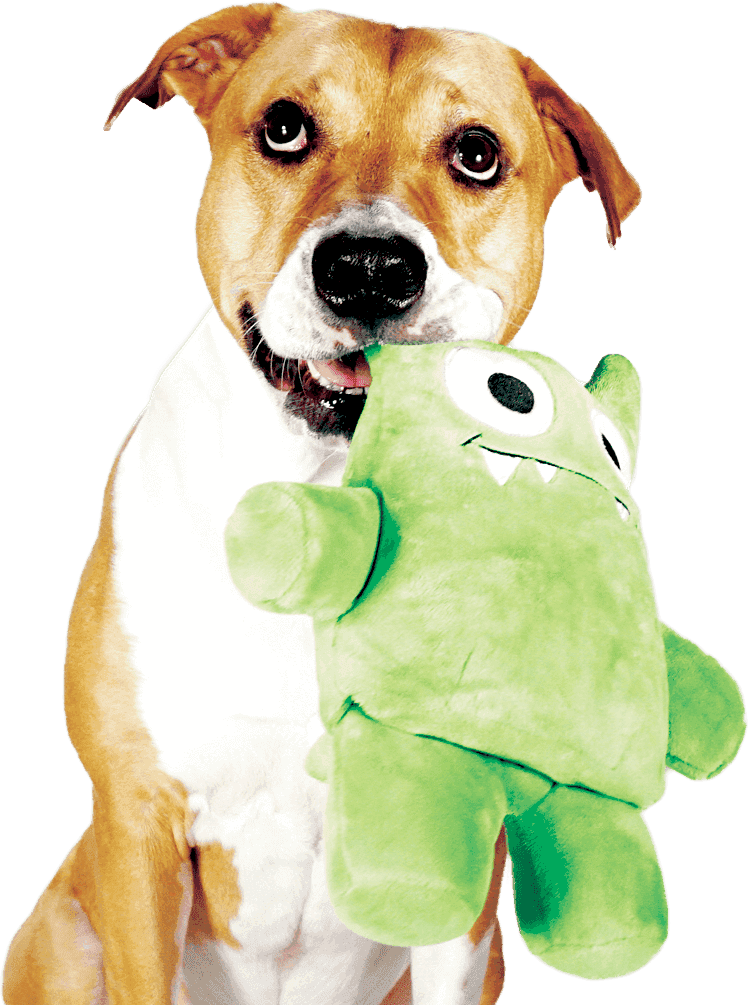 Dog happily holding on to her Tearrible, a plush dog toy that can be torn apart over and over again.